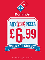 dominos-1-768x1022.png