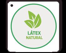 LÁTEX.png