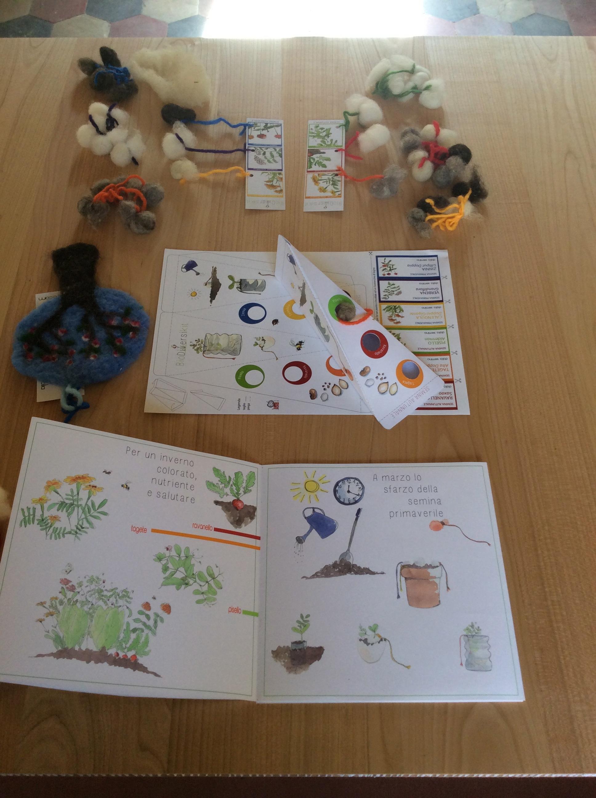 Biodiversikit