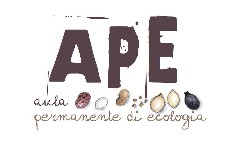 logoAPE.jpg