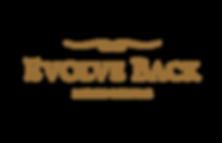 Digital Markeing Case Study - Evolve Back Resorts | Socia Tribe