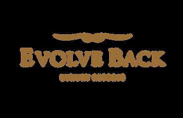 Digital Markeing Case Study - Evolve Back Resorts   Socia Tribe