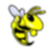 Bee2--newtrademark---yellowjacket-Recove