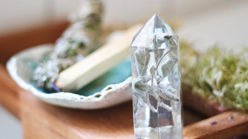 Preserved Sage Crystal
