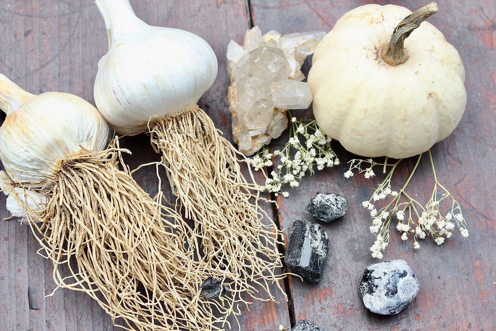 farm grown garlic on display with clear quartz, black tourmaline and a white ghost pumpkin