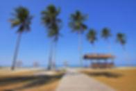 beach-beach-chairs-coconut-trees-131423.jpg