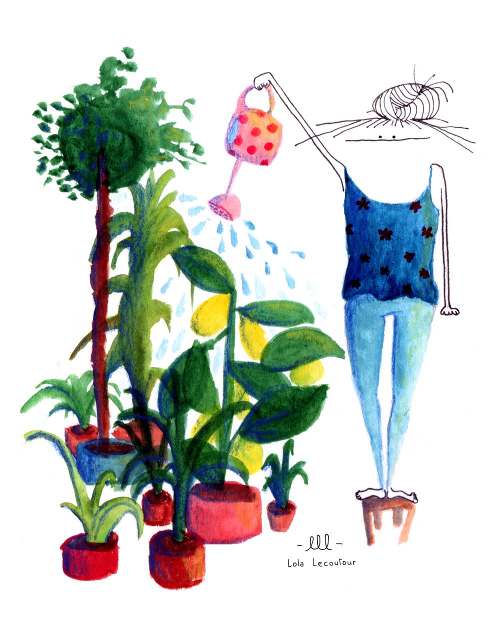 plantes_terasse