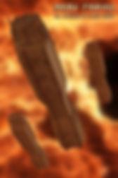 Wallpaper04a-MOVE720.jpg