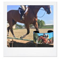 Equestrian- Silver- Nano