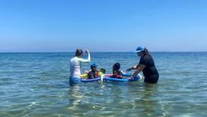 Summer Stories from Starfish