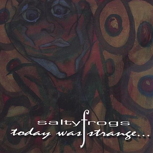 """Today Was Strange"" CD"