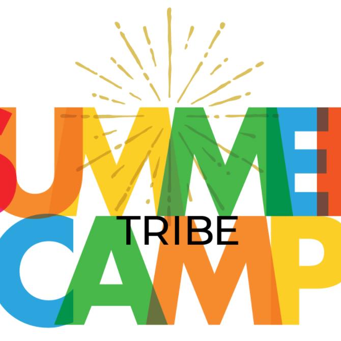 Online Summer Camp Challenge!