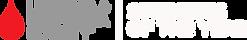 SOY_Logo REVERSE SM.png