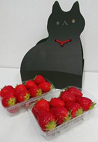 黒猫パッケージ