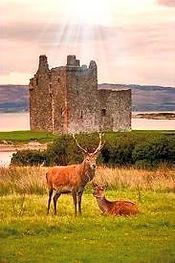 Scottish+history, Scotlands best tours