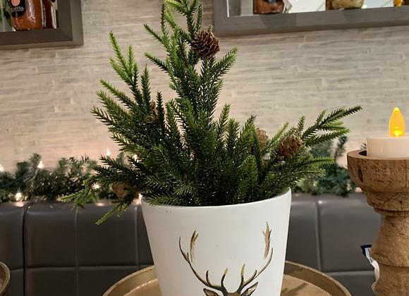 Stag planter