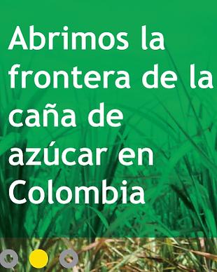 tyt_comunicacion_estrategica_web_bioener