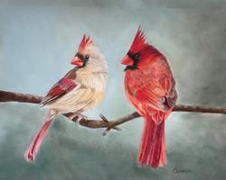 Carolina Cardinals