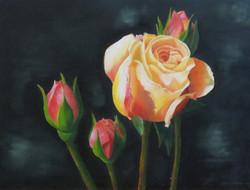 Yellow Roses I
