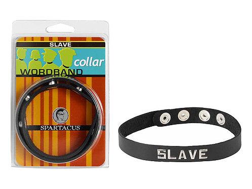 SM COLLAR-SLAVE