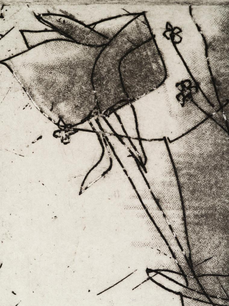 Gravura RES, coleção Adriana