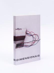 Tridmensionais, 20 anos de trabalhos escultóricos de RES