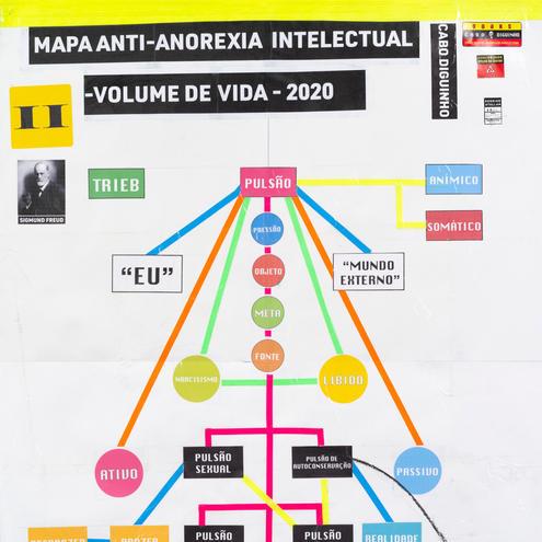 MAPA ANTI ANOREXIA INTELECTUAL II - VOLUME DE VIDA (INTELLECTUAL ANTI-ANOREXIA MAP II - LIFE VOLUME), 2020