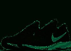 Men's Nike Pegasus 35