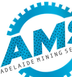 AMS Logo TN