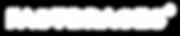 Fastbraces Logo - White.png
