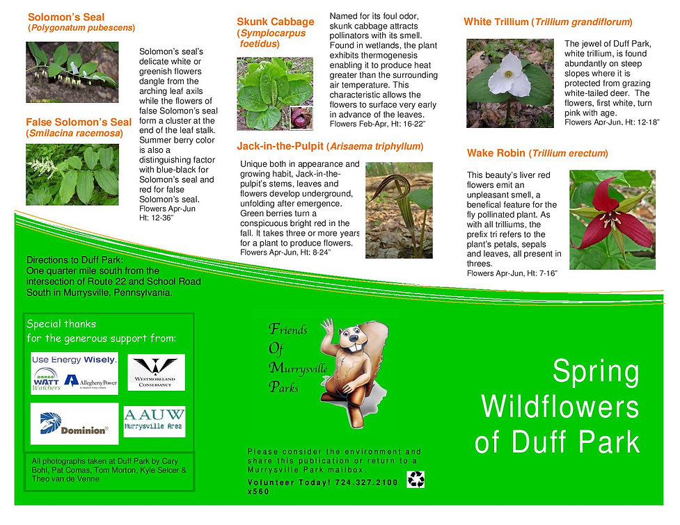Spring Wildflowers of Duff Park _final d