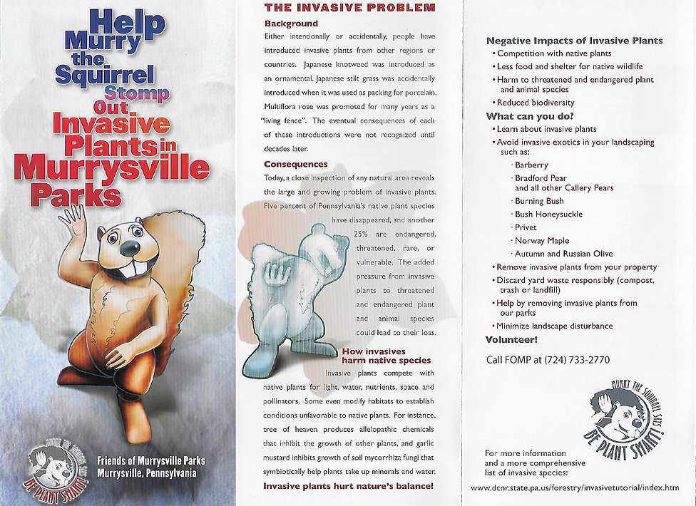 invasive brochure 1.jpg