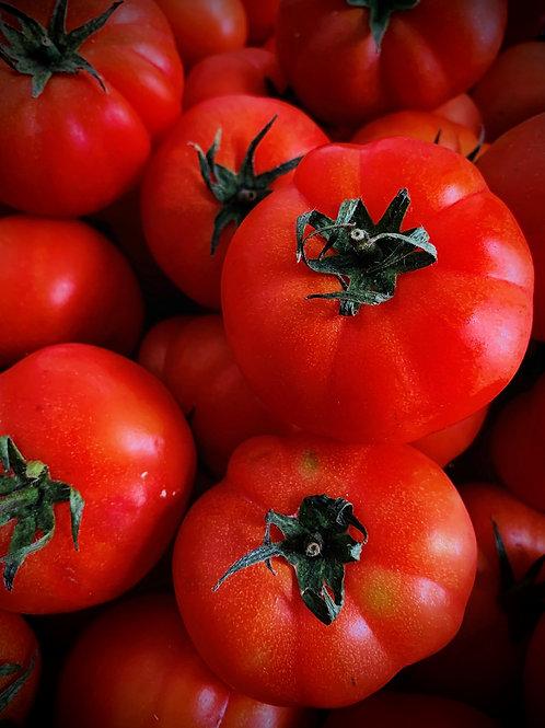 Tomate Rebellion