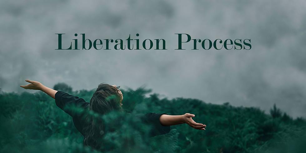 Liberation Process