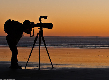 WHAT YOU SHOULD DO BEFORE GOING INTO FULL-TIME PHOTOGRAPHY.