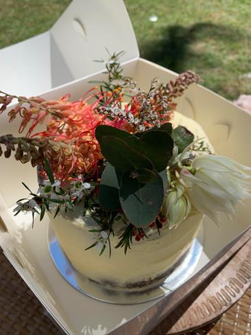 Coastal Rush Cakes