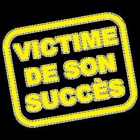 victime-JAUNE de-son-succes-t-shirt-prem