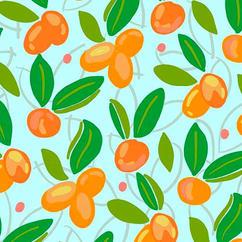My Little Kumquat