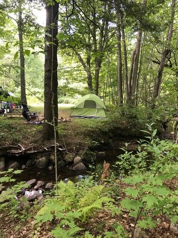 Tent site on Brook