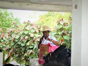 """IAD Founder Mrs. Christine T. Norman Shows Her """"Green Thumb"""""""