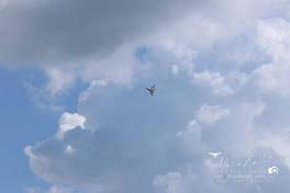 20180728 - Sky Cheifs Fun Fly-41.jpg