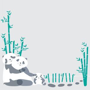 ¿Por qué los Pandas tienen Manchas?