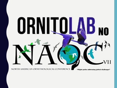 Ornitolab no Naoc 2020