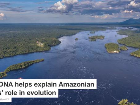 O  duplo papel dos rios amazônicos na geração e manutenção da diversidade de aves