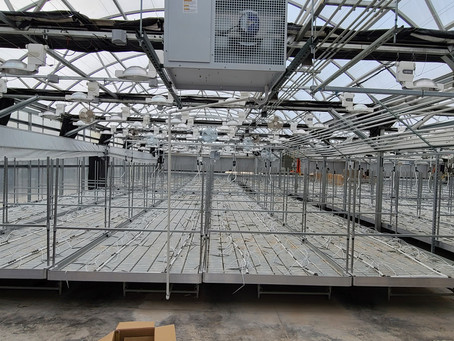 3 Things to Avoid When Planning a Commercial Cultivation Facility