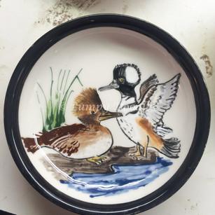 Hooded Merganser Ducks