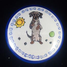 Bubba the Weiner Dog