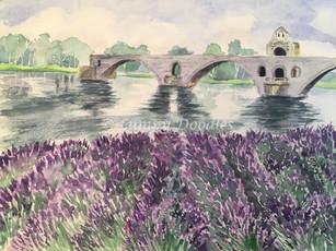 The Pont Saint-Bénézet, Avignon, France