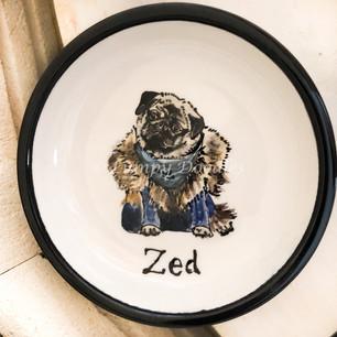 Zed Dressed as Jon Snow