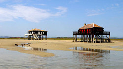 bassin-arcachon-cabanes-tchanquees